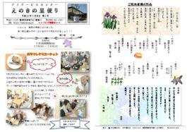 thumbnail of 榎の里便り 2号 6月