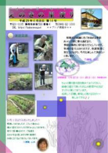 thumbnail of enoki_20170601